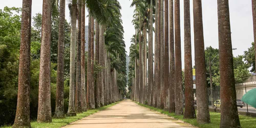 rio-gardens-horizontal